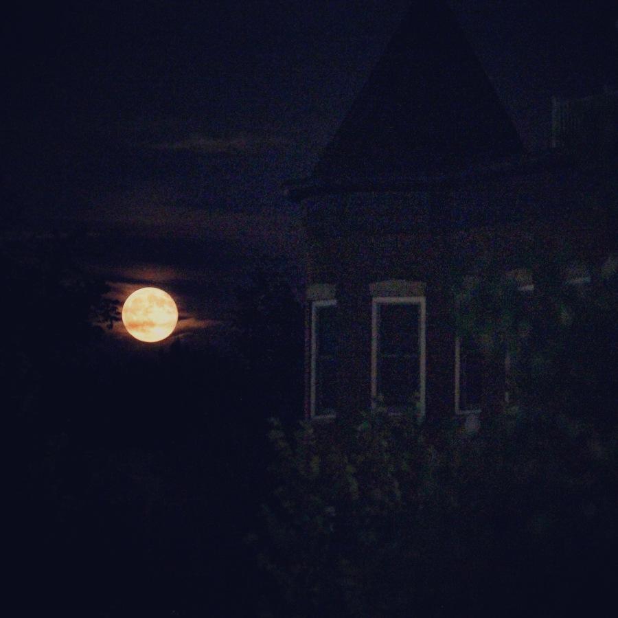 full-buck-moon-on-capitol-hill-wdc_28339027982_o