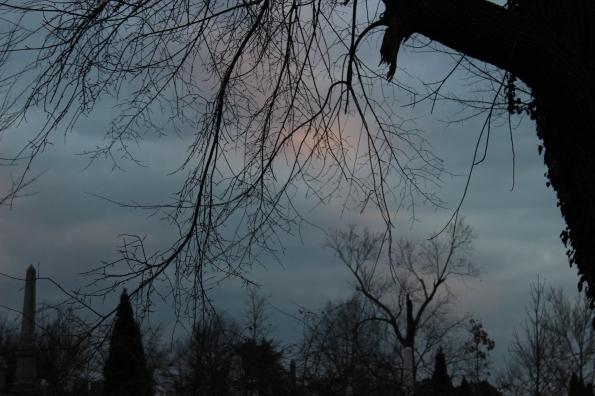 dawn-in-hill-east_16484128766_o