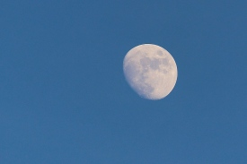 new-year-moon_16144540806_o