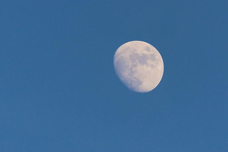 new-year-moon_16144540806_o
