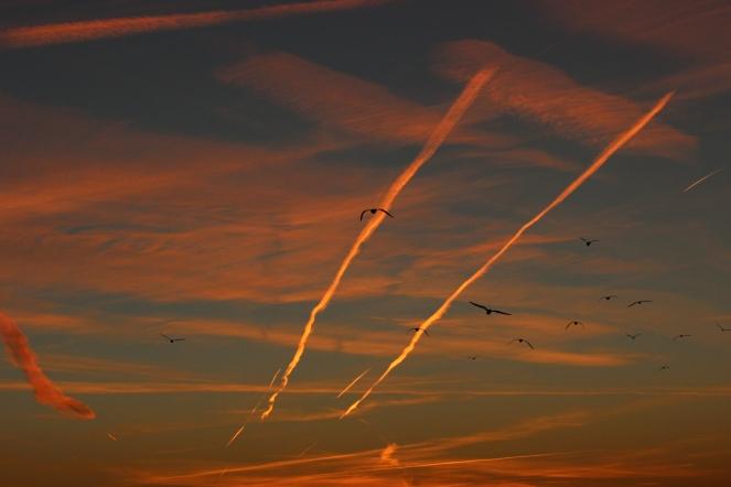sunset-over-the-anacostia_15299175573_o