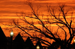 what-a-sky-tonight-wdc_15477942650_o