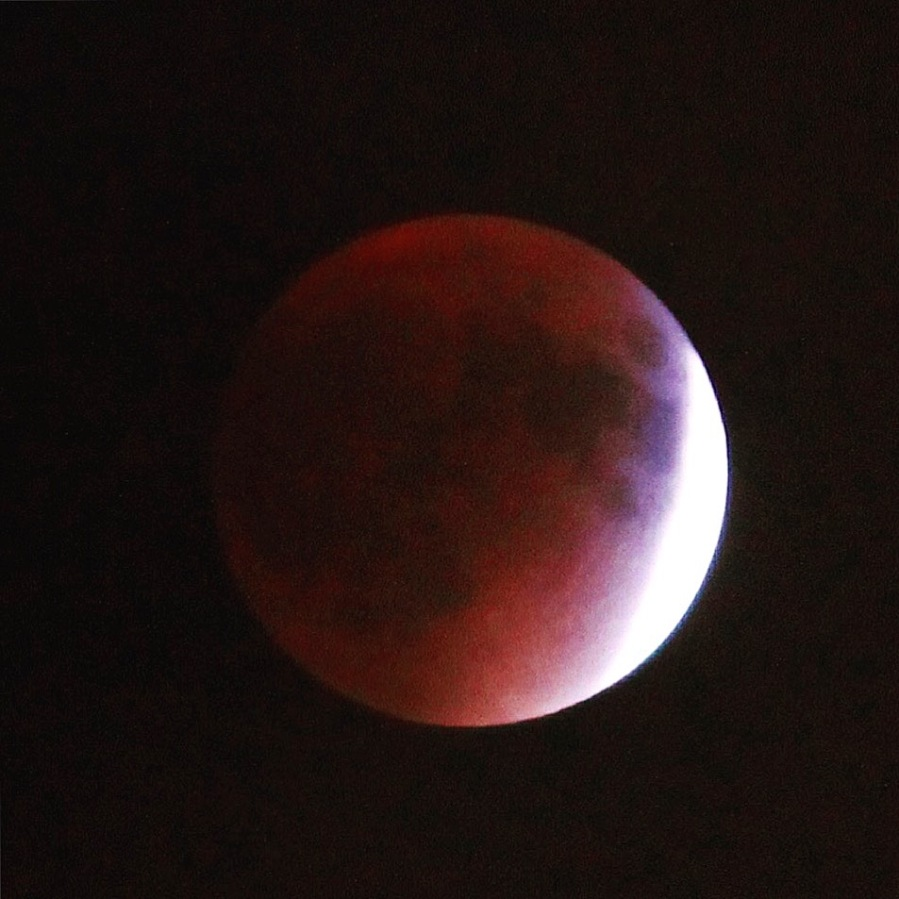 2015-blood-red-moon_40055920562_o