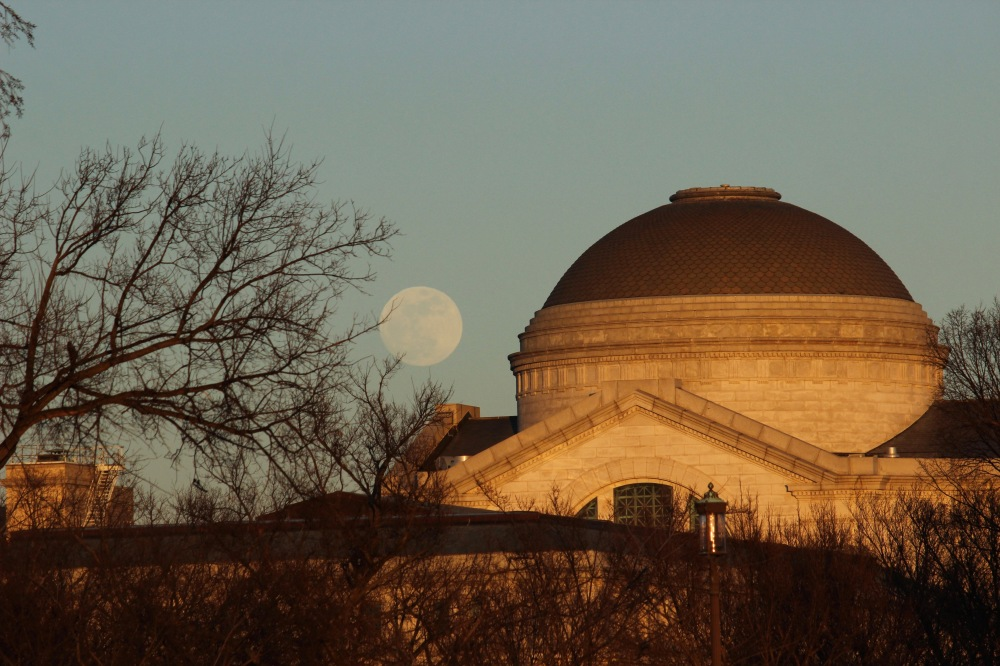 moon-rises-over-dc-at-sunset-tuesday_39993468201_o