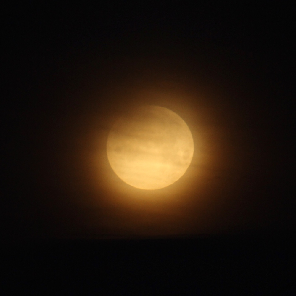 partially-eclipsed-blue-super-blood-moon-dips-below-the-clouds-this-morning-in-dc_39294512074_o