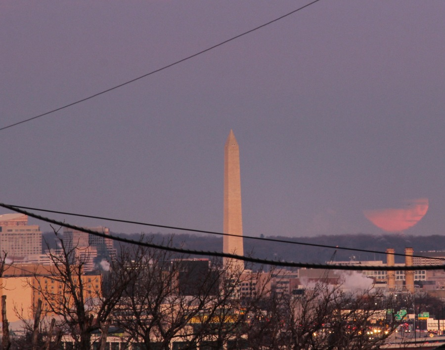 partially-eclipsed-blue-super-blood-moon--this-morning-in-dc_39293191144_o