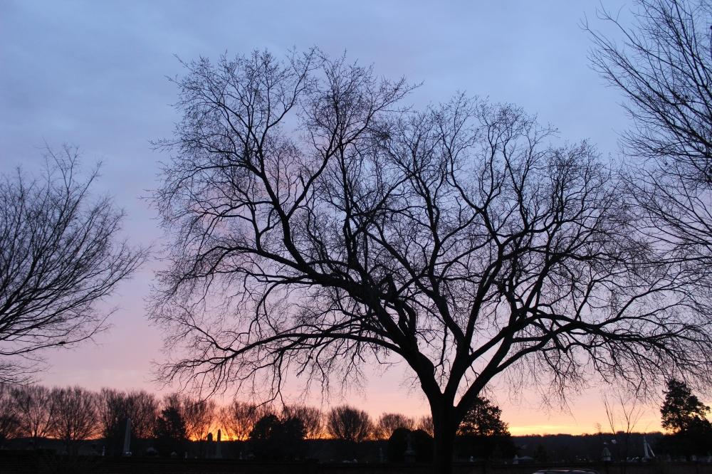 thursdays-sunrise-in-se-dc_39988969292_o