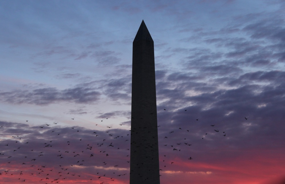 wednesday-evening-in-dc_39135727435_o